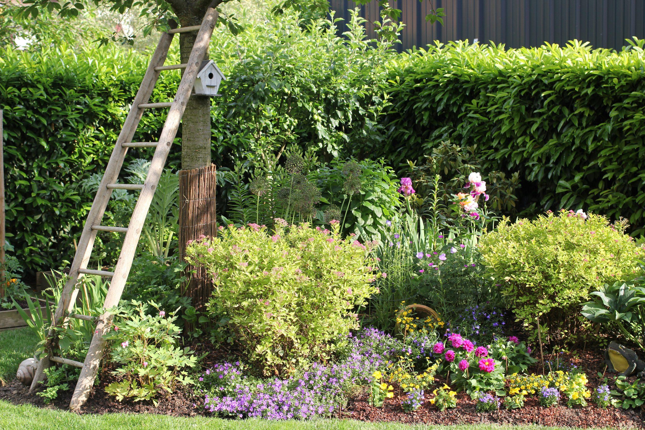 Aménager Son Jardin : Budget Et Conseils concernant Aménagement Du Jardin Photo