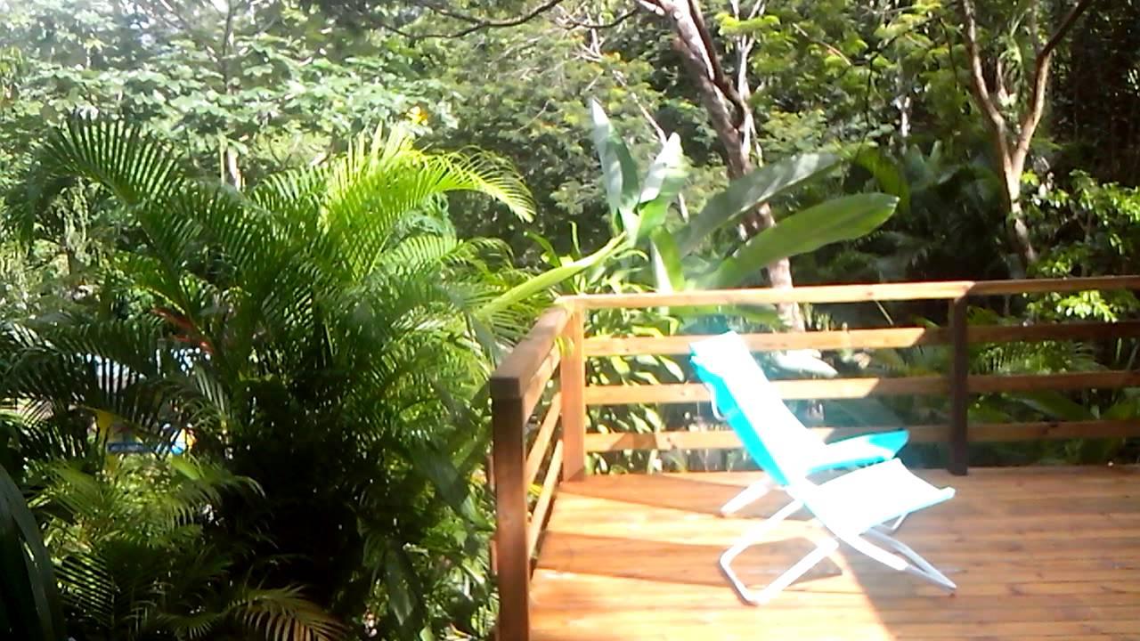 Au Jardin Des Colibris Deshaies Guadeloupe ... Gite De Charme Au Coeur De  La Nature intérieur Jardin Des Colibris Guadeloupe