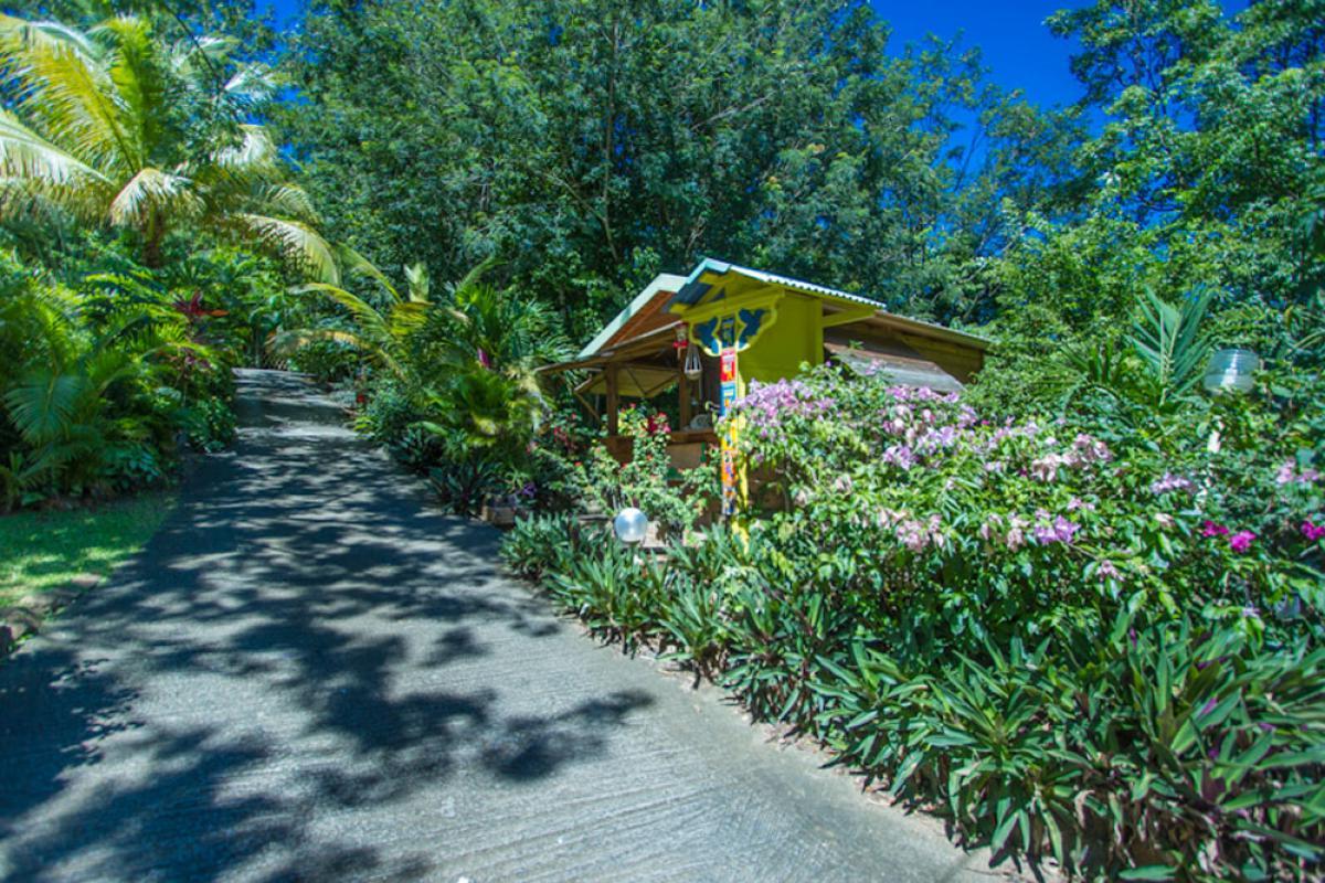 Au Jardin Des Colibris (Deshaies, Guadeloupe) pour Jardin Des Colibris Guadeloupe
