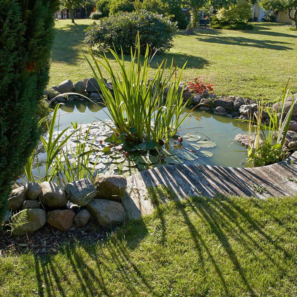 Bassin De Jardin Préformé, Hors Sol… On Plonge : Femme ... pour Bassin Jardin Hors Sol