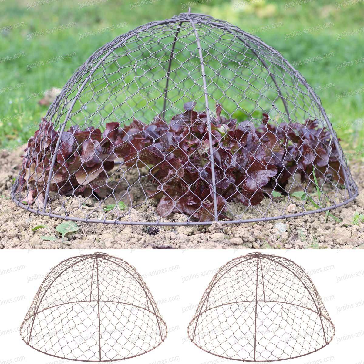 Belles Cloches En Grillage   Grillage A Poule, Poule Et Topiaire avec Protection Grillage Jardin