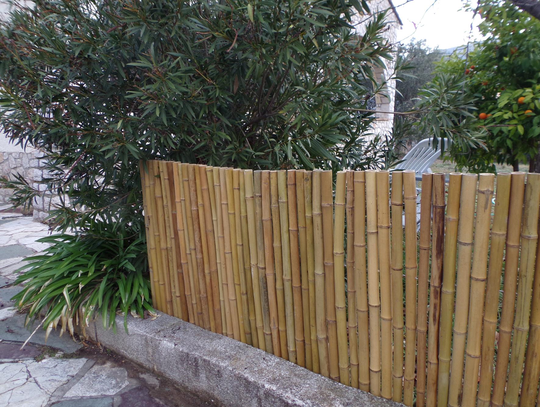 Canisse Bambou Epais - Diam 3-3,5 Cm intérieur Deco Jardin Bambou