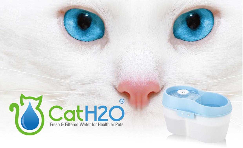 Cat H2O destiné Fontaine A Eau Chat Truffaut