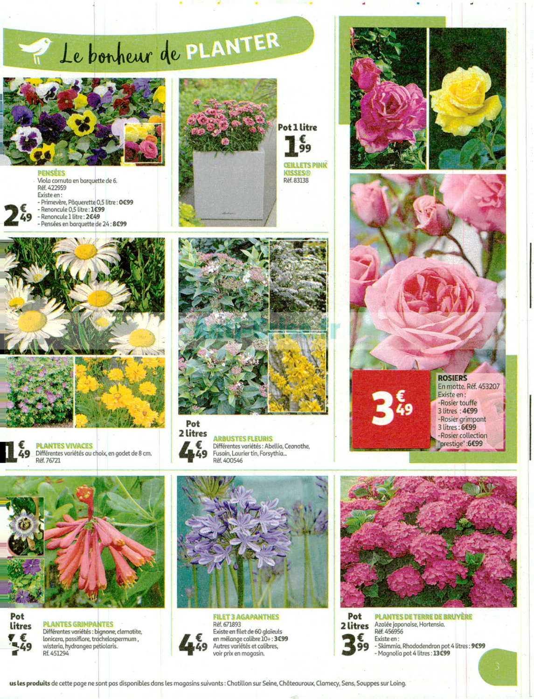 Catalogue Auchan Du 04 Au 14 Mars 2020 (Jardin) - Catalogues ... dedans Auchan Jardin