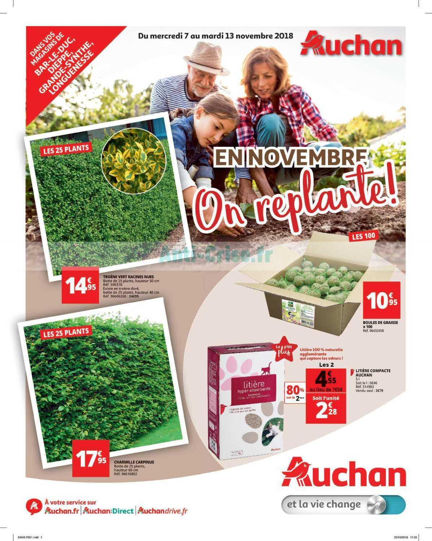 Catalogue Auchan Du 07 Au 13 Novembre 2018 (Jardin ... destiné Auchan Jardin