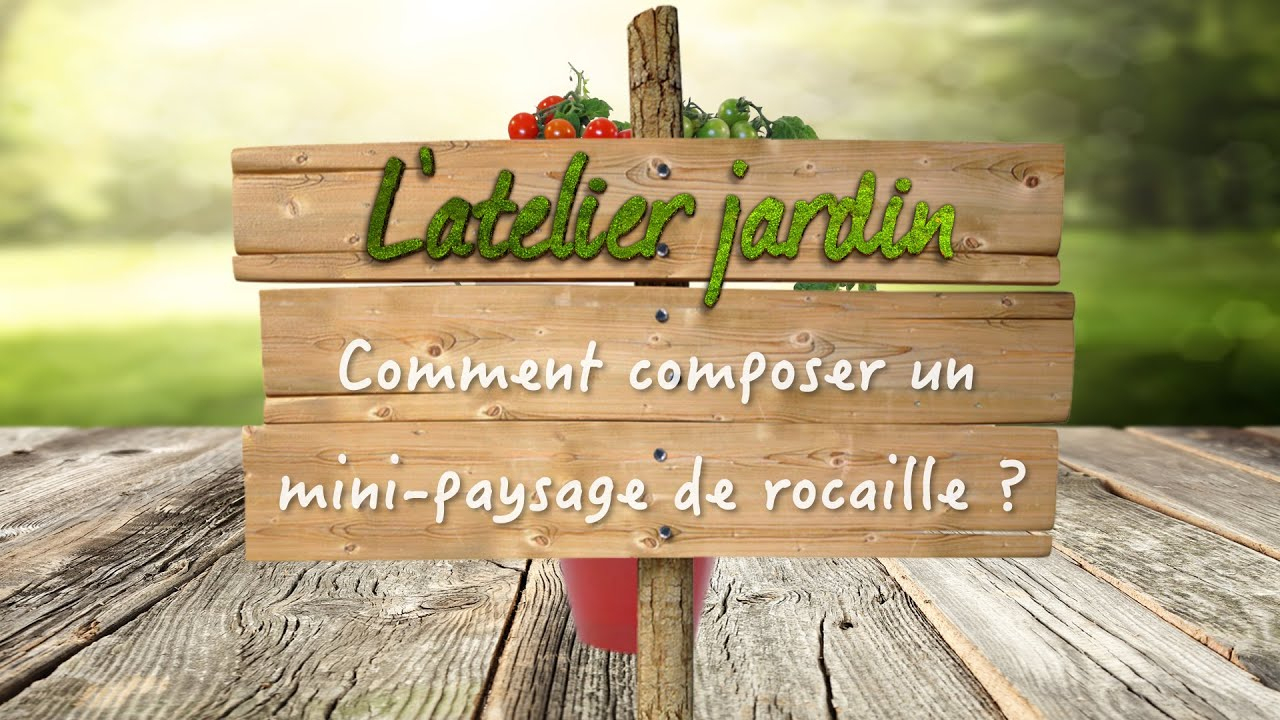 Comment Composer Un Mini-Paysage De Rocaille ? à Composer Un Jardin