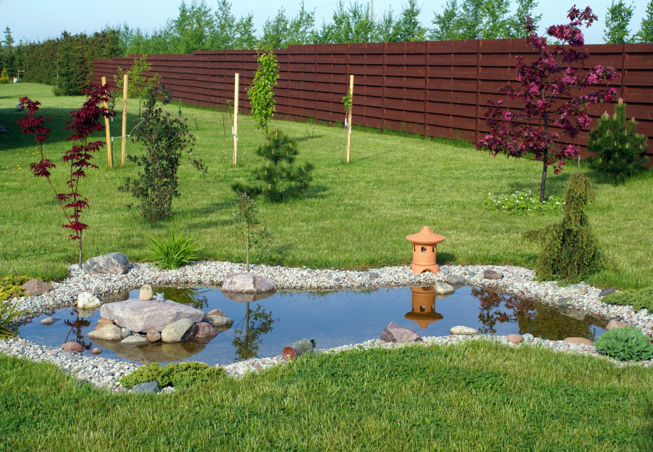 Construire Un Bassin De Jardin En 7 Étapes - Le Tuto De Mon ... destiné Faire Un Bassin De Jardin