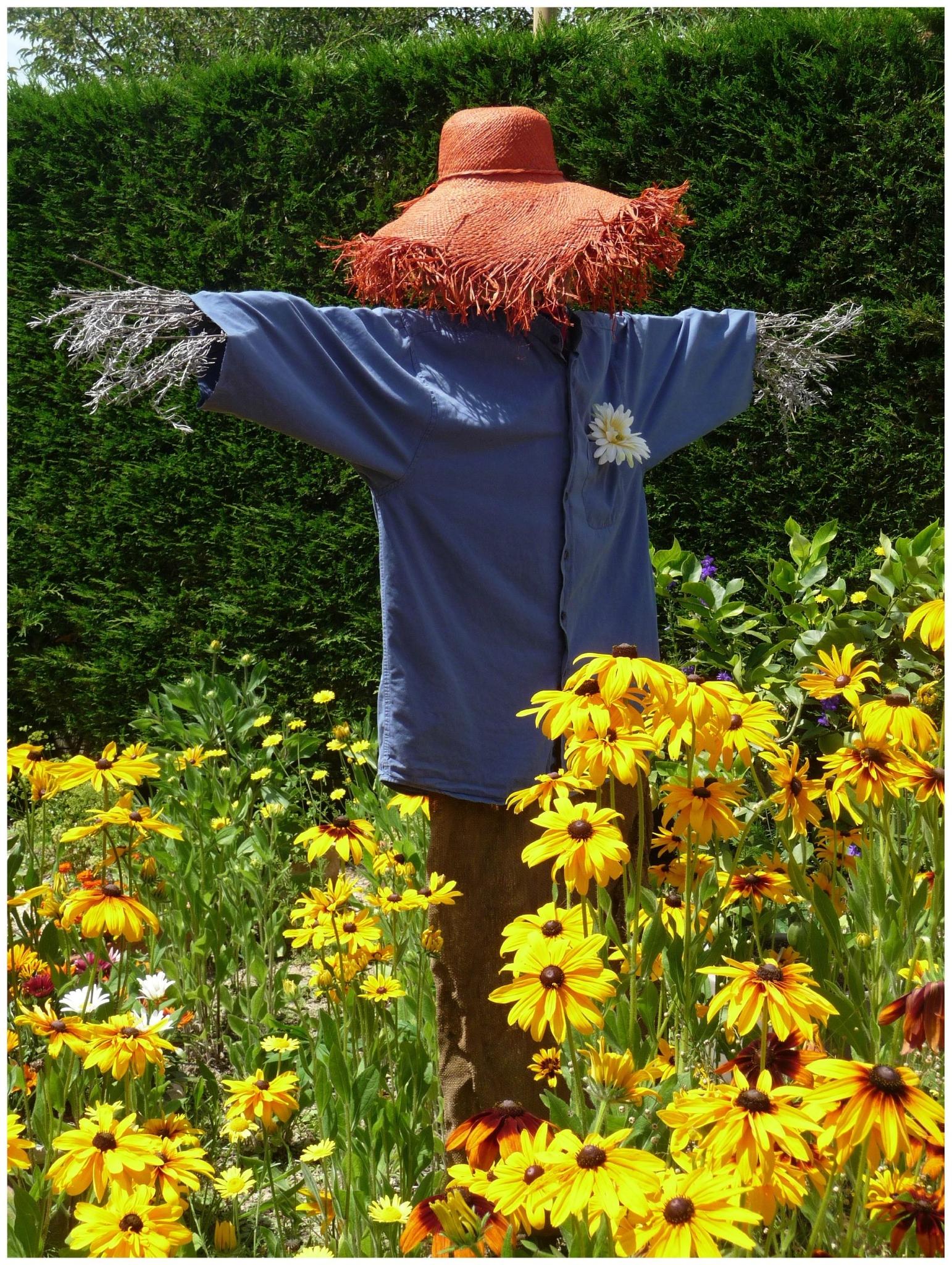 Épouvantail Au Jardin - Une Fenêtre Entr'ouverte destiné Épouvantail Jardin