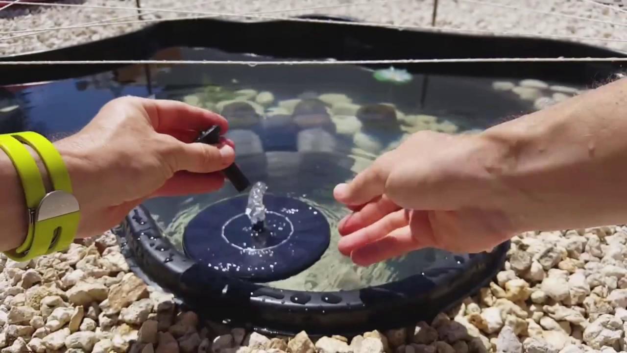 Fontaine Solaire Flottante Test Trendszy : Bassin Et Jardin ★ pour Fontaine Solaire