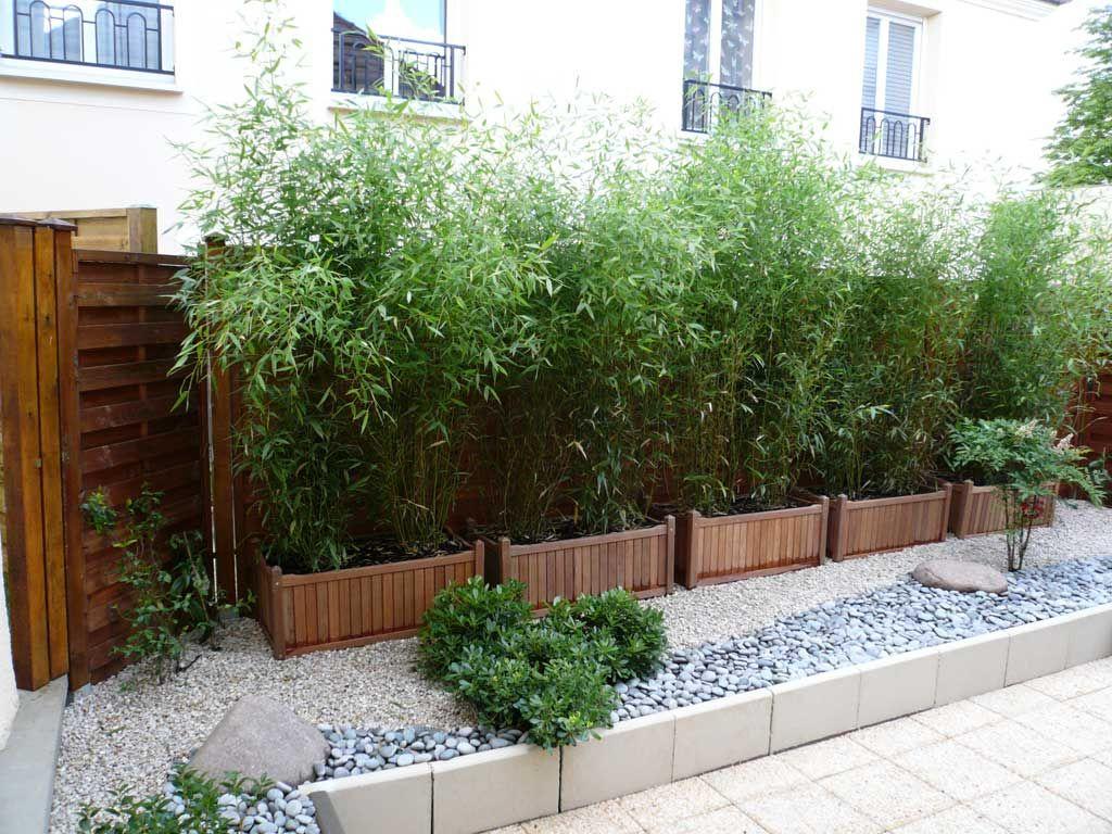 Haie De Bambous En Pots | Aménagement Jardin | Bambous ... à Deco Jardin Bambou