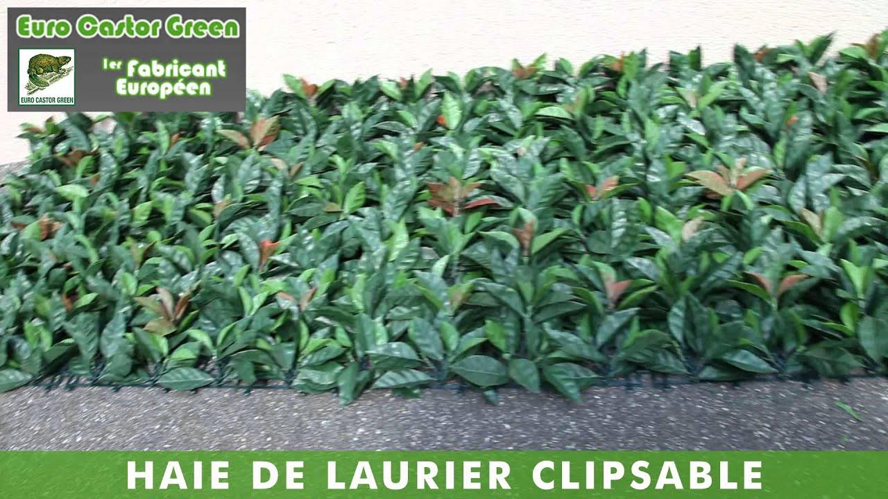 Haie De Laurier Rose Clipsable - Haie Artificielle, Brise Vue, Occultant,  Canisse, Clôture avec Brise Vue Fausse Haie