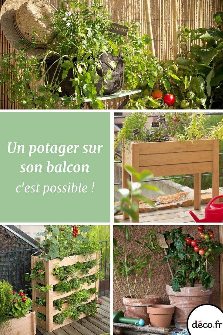Je Veux Un Potager Sur Mon Balcon | Jardin Urbain | Potager ... destiné Un Jardin Sur Mon Balcon