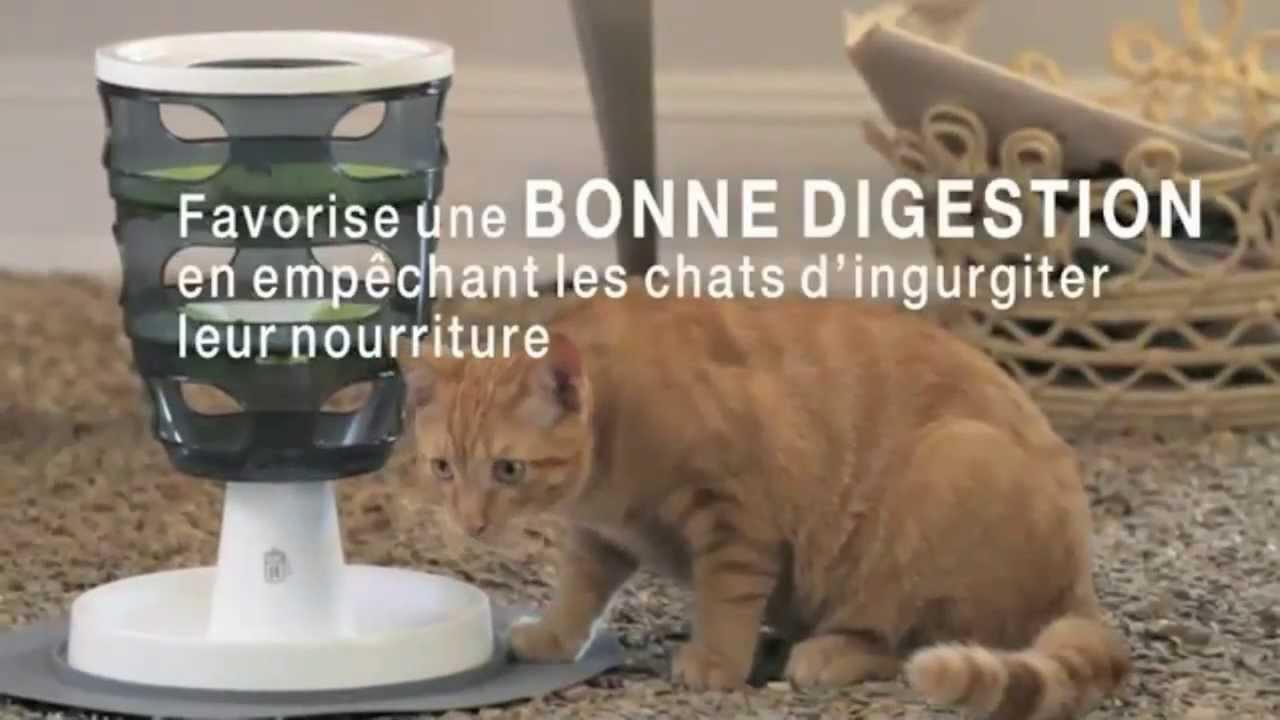 Jeux Et Fontaine Pour Chat - Catit - Jardinerie Truffaut Tv à Fontaine A Eau Chat Truffaut