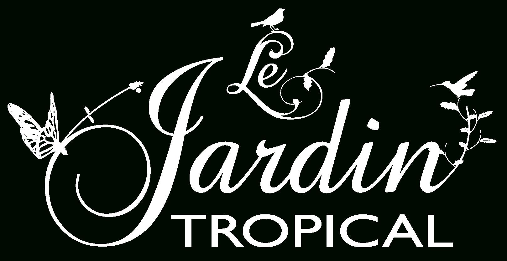 Le Jardin Tropical - Location Vacances En Guadeloupe, Villa ... à Le Jardin Tropical Bouillante