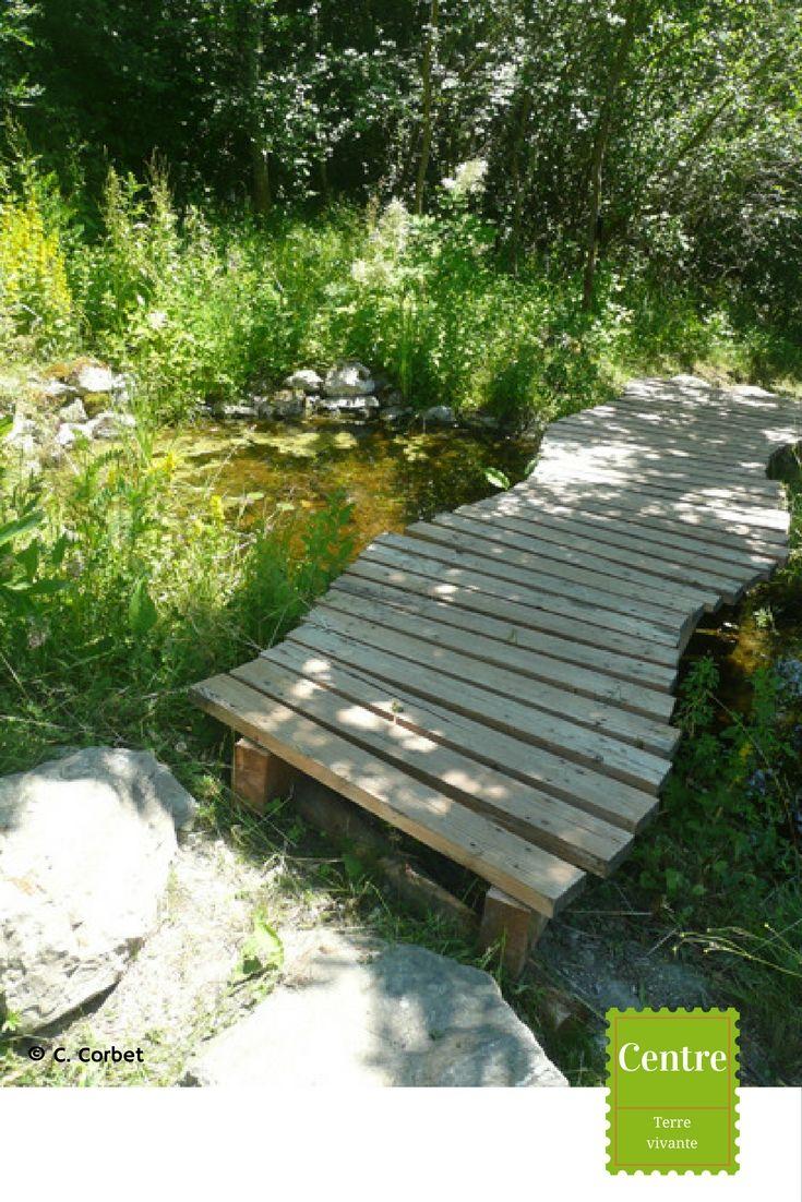 Le Petit Pont De Bois... (Avec Images) | Pont En Bois ... destiné Pont De Jardin Bois