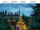 """Magazine N°11 By Botanic - Issuu encequiconcerne """"jardiland"""" -""""horaires"""" -""""narolles"""""""