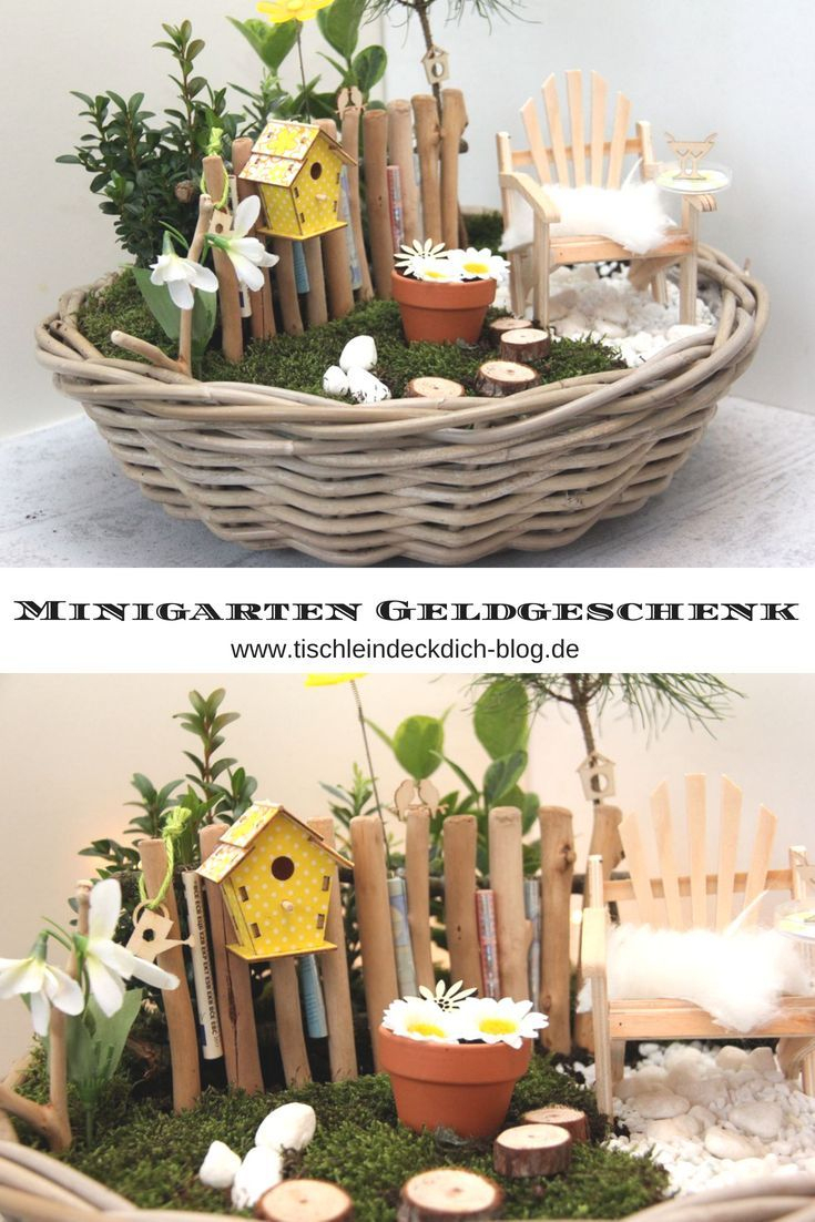 Mini Jardin - Un Cadeau Printanier À Offrir   Don D'argent ... encequiconcerne Cadeau Jardin