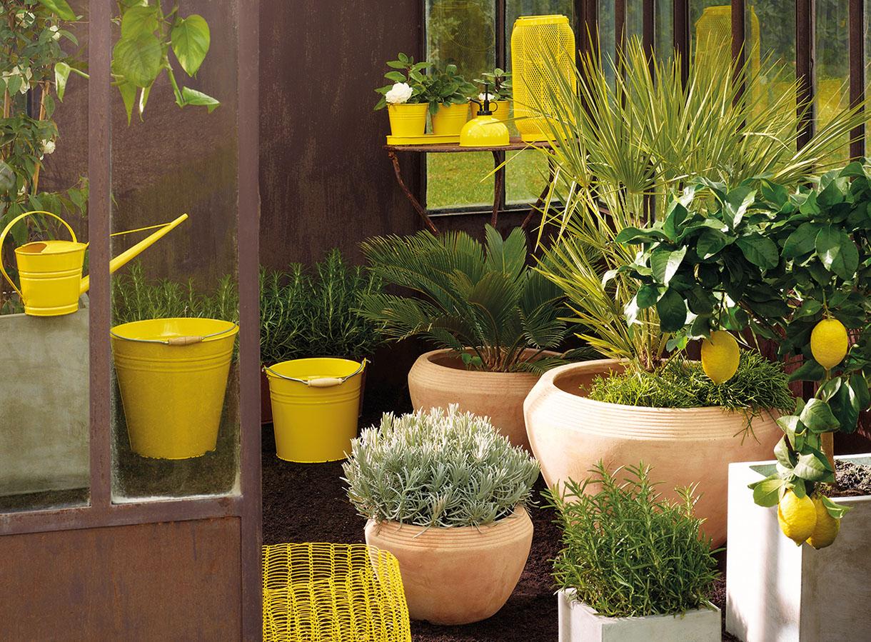 Mobilier De Jardin : Mettez De La Couleur Au Jardin Avec Le ... intérieur Pot Couleur Jardin