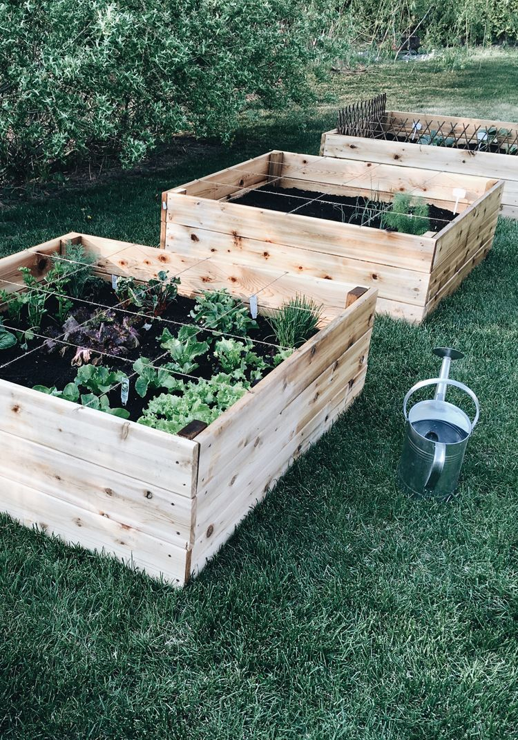 On Le Sait Tous, Jardiner N'est Plus Une Activité De ... pour Bac À Jardiner