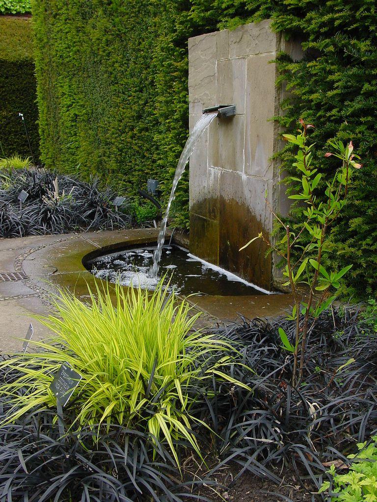 Ophiopogon Nigrescens & Gold Hakonecholoa   Bahce Düzeni ... pour Fontaine A Eau Pour Jardin