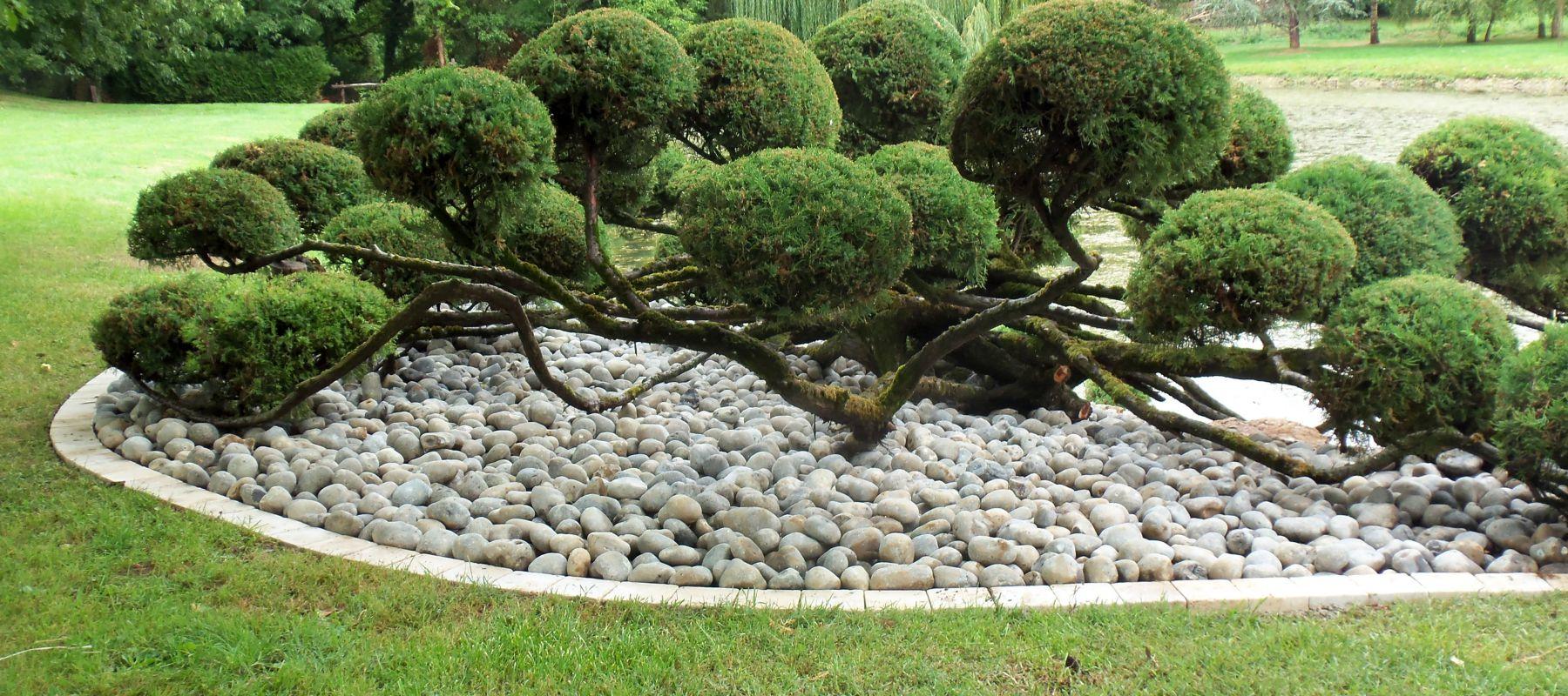 Pannequin Paysage : Aménagements Paysagers - Aménagement ... pour Aménagement Du Jardin Photo
