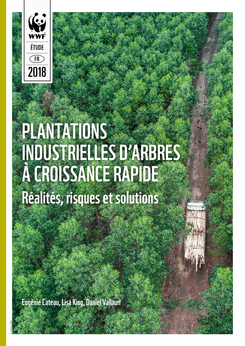 Pdf) Plantations Industrielles D'arbres À Croissance Rapide ... encequiconcerne Arbre À Croissance Rapide