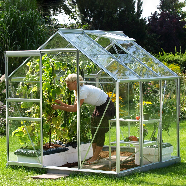 Serre De Jardin En Verre Trempé Allium Venus 3.80 M². Aluminium Naturel -  735.00€ Livraison Comprise avec Verre Pour Serre De Jardin