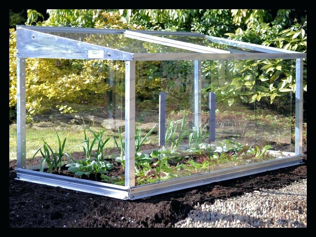 Serre De Jardin Polycarbonate Castorama – Gamboahinestrosa avec Bache Pour Serre Castorama
