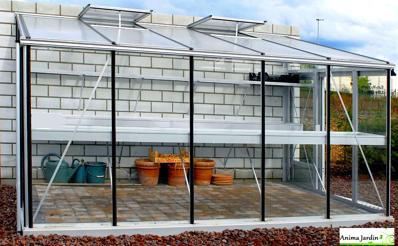 Serre Jardin Adossée, Murale, En Verre Trempé, Aluminium 3.80M, Euro-Serre,  Achat concernant Serre De Jardin Adossee Un Mur