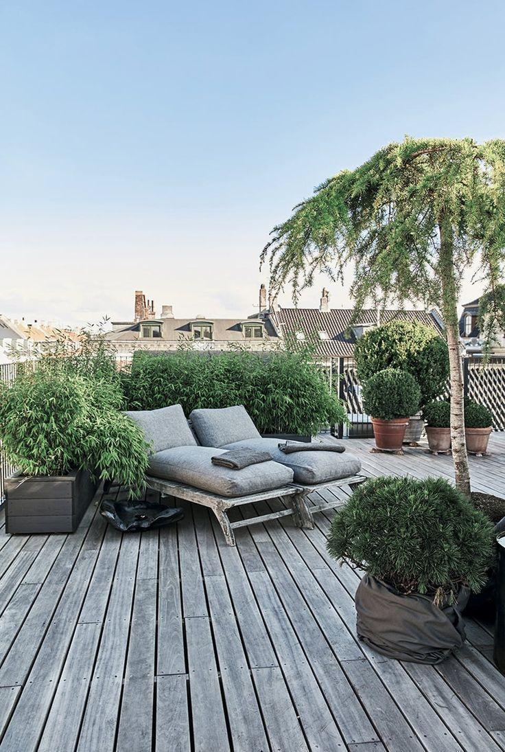 Terrasse De La Ville, Terrasse Sur Le Toit, Couleurs Terre À ... encequiconcerne Pot Couleur Jardin