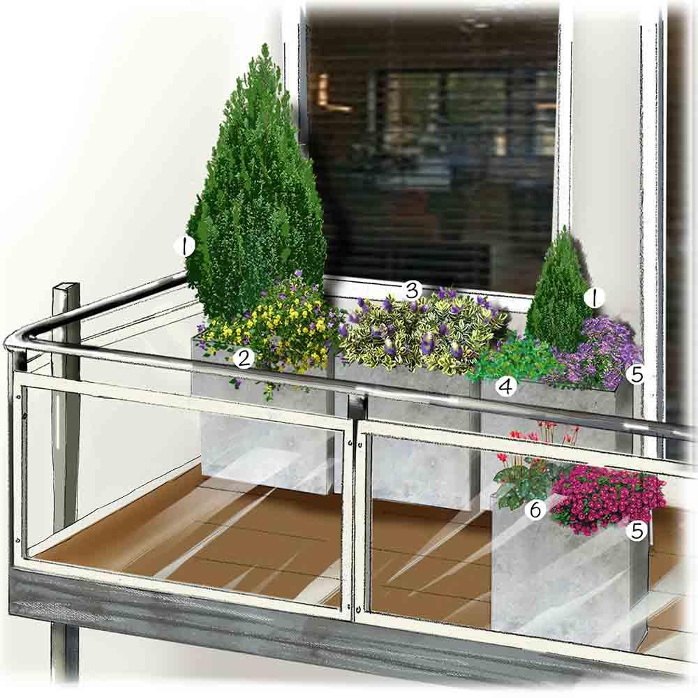 Un Jardin Sur Mon Balcon à Un Jardin Sur Mon Balcon