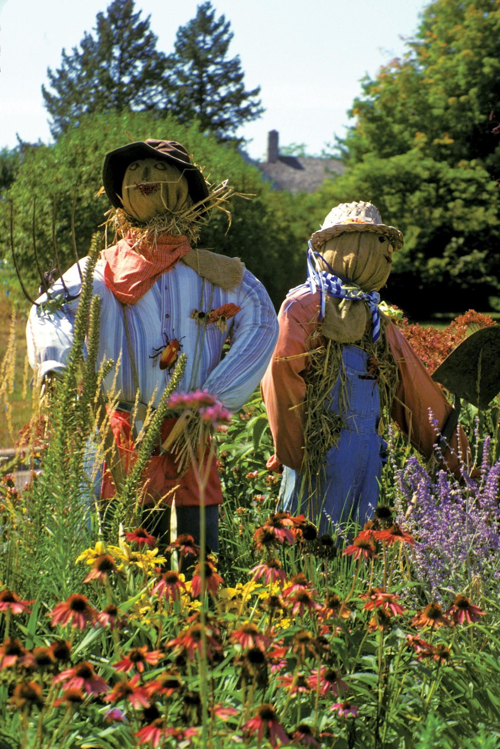 Using Scarecrows As A Garden Guard | Épouvantail De Jardin ... pour Épouvantail Jardin